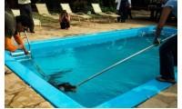 В Нью-Джерси в бассейне был найден аллигатор