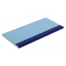Противоскользящая плитка с буртиком, глазурованная (12,5х25)