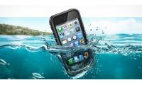 Бассейн во власти телефона
