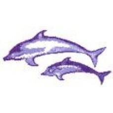 Дельфин 7
